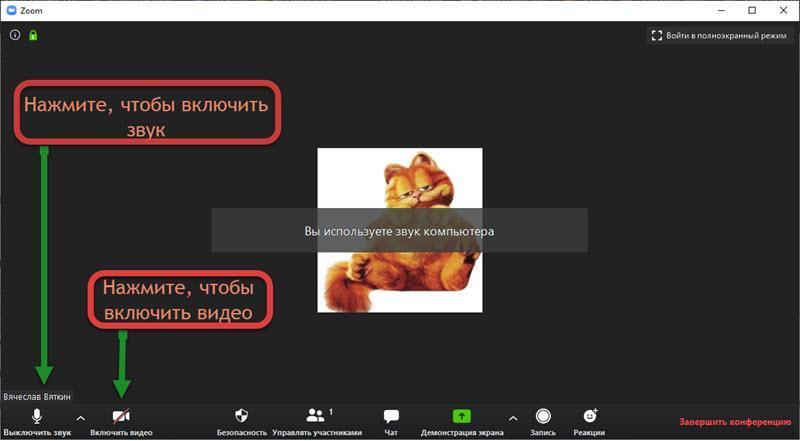 Как включить звук и видео в Zoom