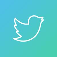 Как скачать видео с твиттера
